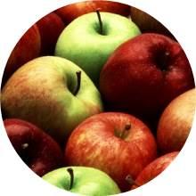Õunamoos