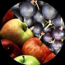 Õuna-mustsõstramoos